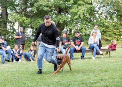SwissBoxer-DogShow-2019-©BoxerClubGVA-(472)