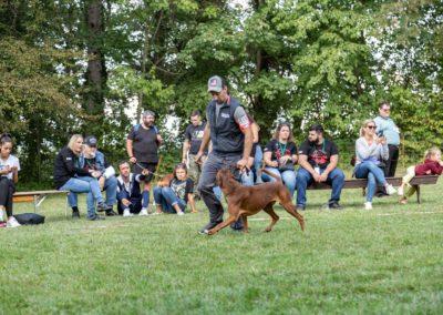 SwissBoxer-DogShow-2019-©BoxerClubGVA-(475)
