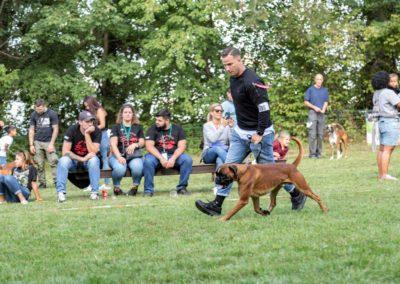 SwissBoxer-DogShow-2019-©BoxerClubGVA-(476)