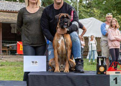 SwissBoxer-DogShow-2019-©BoxerClubGVA-(478)