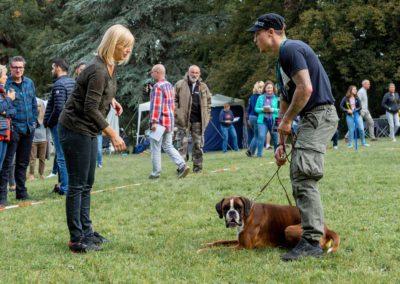 SwissBoxer-DogShow-2019-©BoxerClubGVA-(48)