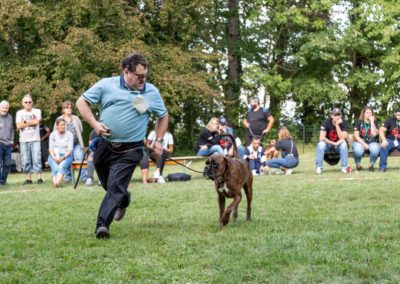 SwissBoxer-DogShow-2019-©BoxerClubGVA-(482)