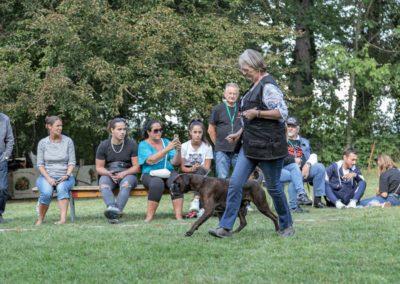 SwissBoxer-DogShow-2019-©BoxerClubGVA-(489)