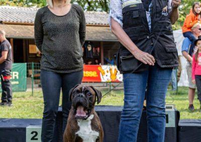 SwissBoxer-DogShow-2019-©BoxerClubGVA-(490)