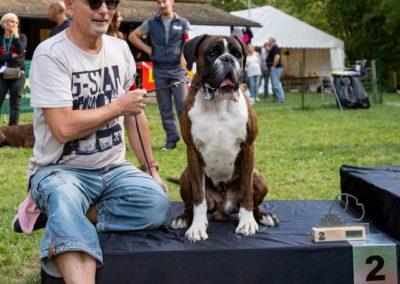 SwissBoxer-DogShow-2019-©BoxerClubGVA-(493)