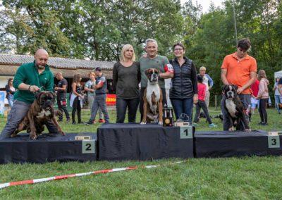 SwissBoxer-DogShow-2019-©BoxerClubGVA-(496)