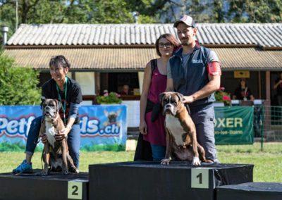 SwissBoxer-DogShow-2019-©BoxerClubGVA-(497)