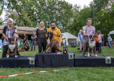 SwissBoxer-DogShow-2019-©BoxerClubGVA-(499)