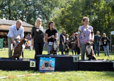 SwissBoxer-DogShow-2019-©BoxerClubGVA-(502)