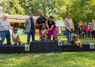 SwissBoxer-DogShow-2019-©BoxerClubGVA-(512)