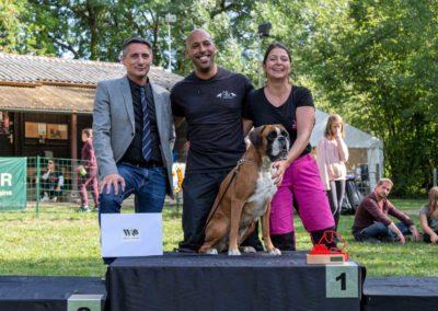 SwissBoxer-DogShow-2019-©BoxerClubGVA-(516)