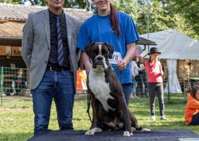 SwissBoxer-DogShow-2019-©BoxerClubGVA-(517)