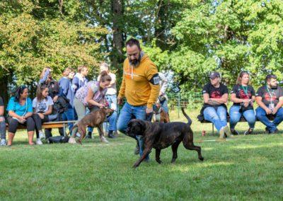 SwissBoxer-DogShow-2019-©BoxerClubGVA-(519)