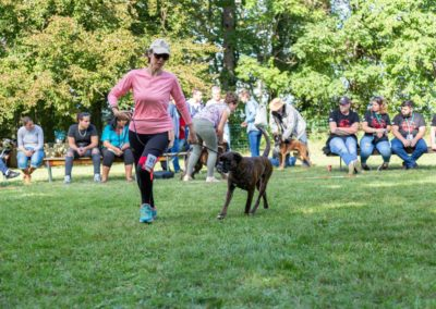 SwissBoxer-DogShow-2019-©BoxerClubGVA-(520)