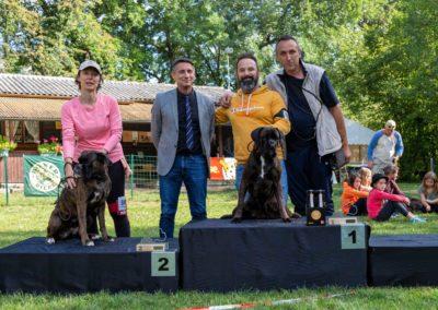 SwissBoxer-DogShow-2019-©BoxerClubGVA-(521)