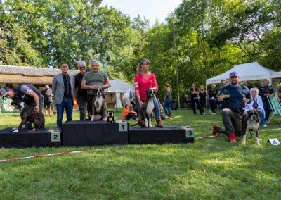 SwissBoxer-DogShow-2019-©BoxerClubGVA-(523)
