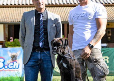 SwissBoxer-DogShow-2019-©BoxerClubGVA-(527)