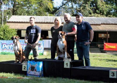 SwissBoxer-DogShow-2019-©BoxerClubGVA-(532)