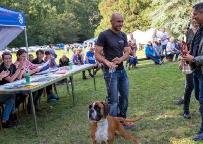 SwissBoxer-DogShow-2019-©BoxerClubGVA-(539)