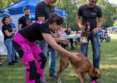 SwissBoxer-DogShow-2019-©BoxerClubGVA-(541)