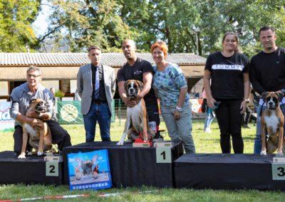 SwissBoxer-DogShow-2019-©BoxerClubGVA-(547)