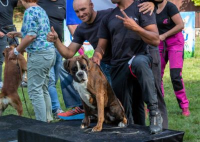 SwissBoxer-DogShow-2019-©BoxerClubGVA-(549)