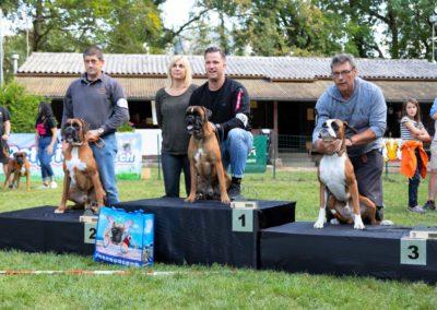 SwissBoxer-DogShow-2019-©BoxerClubGVA-(550)
