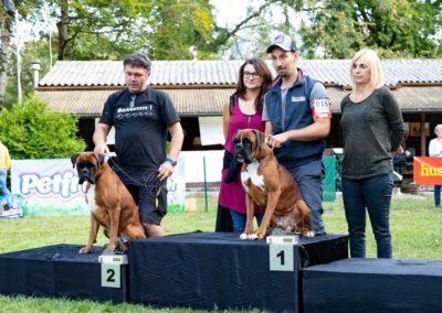 SwissBoxer-DogShow-2019-©BoxerClubGVA-(555)