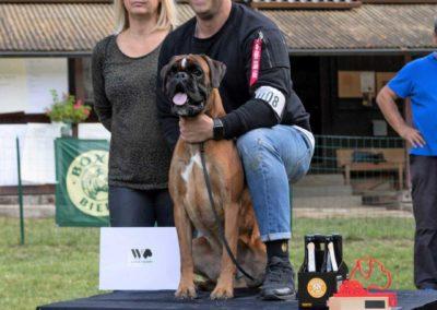 SwissBoxer-DogShow-2019-©BoxerClubGVA-(558)