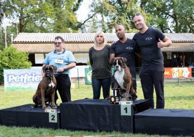 SwissBoxer-DogShow-2019-©BoxerClubGVA-(559)