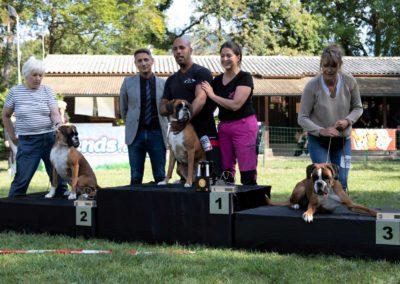 SwissBoxer-DogShow-2019-©BoxerClubGVA-(566)
