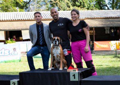 SwissBoxer-DogShow-2019-©BoxerClubGVA-(569)
