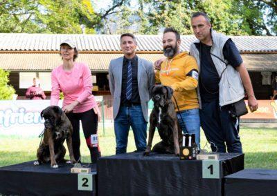 SwissBoxer-DogShow-2019-©BoxerClubGVA-(572)