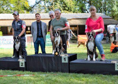 SwissBoxer-DogShow-2019-©BoxerClubGVA-(573)