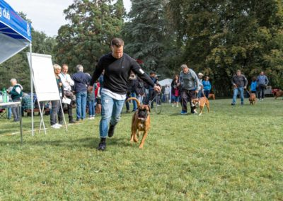 SwissBoxer-DogShow-2019-©BoxerClubGVA-(62)