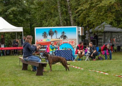 SwissBoxer-DogShow-2019-©BoxerClubGVA-(73)