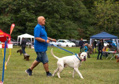 SwissBoxer-DogShow-2019-©BoxerClubGVA-(77)
