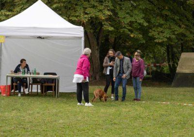SwissBoxer-DogShow-2019-©BoxerClubGVA-(96)